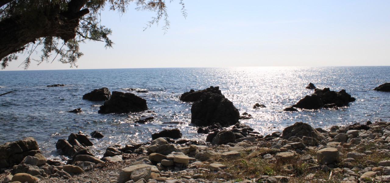 Strand in pioppi